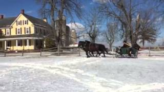 Horse-Drawn Sleigh Rides