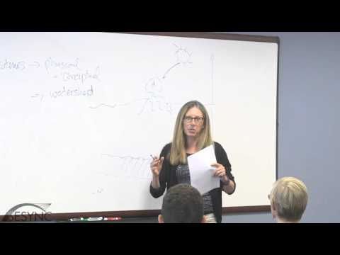 Ecosystem ecology: Theories, methods, lenses