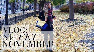 vlog: Sweet November • Montréal, New Orleans, Vegas | HAUSOFCOLOR Thumbnail