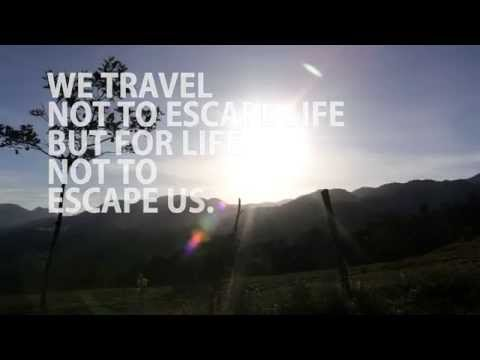 Best Travel Quotes Viral Video