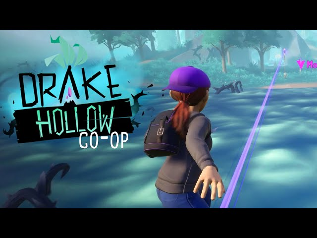 Drake Hollow (Co-op) - Creating the Network (Part 4)
