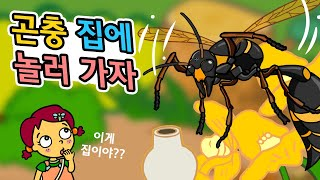 곤충 집에 놀러 가자 | 곤충들은 어떤 집에서 살까? | 거품벌레 호리병벌  | 곤충박사★지니키즈