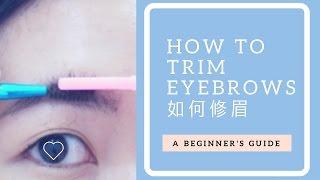 [美妝] 如何修眉 韓國流行自然眉型 一字眉OUT風 - DIY - How to Trim Eyebrows│allyheartslife