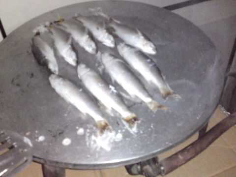 Grilled fish frome sony ericsson satio سمك ميد يحلو