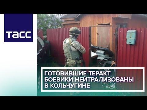 Готовившие теракт боевики нейтрализованы в Кольчугине