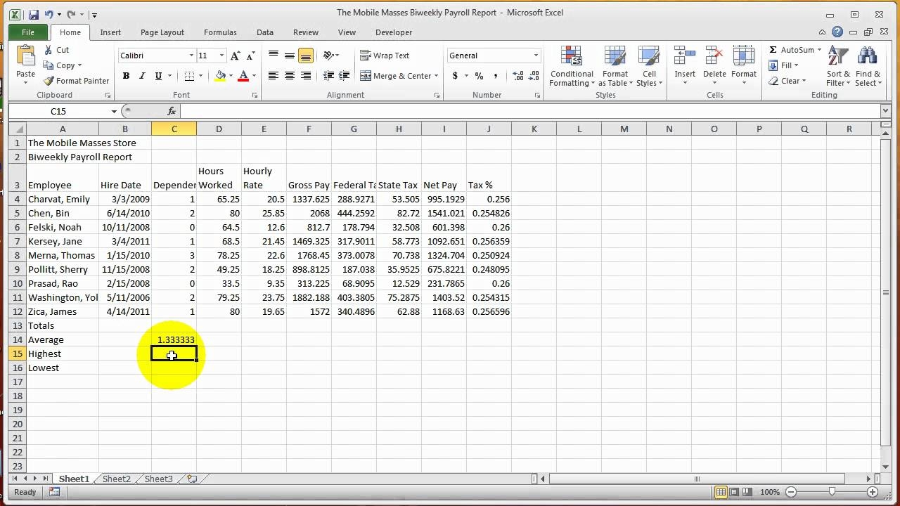 Excel Chapter 20 Formulas, Functions, and Formatting
