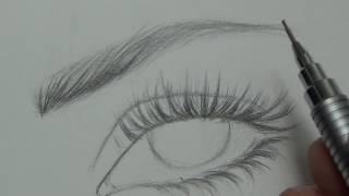 تعليم الرسم كيفية رسم الرموش والحواجب للرجل والمرأة بطريقة سهلة