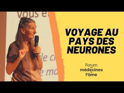Anne SIMON : Voyage au pays des neurones