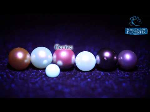 Cultured Pearls under UV Light Pearl Fluorescence
