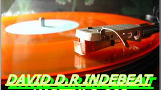DAVID D R INDEBEAT KAPITULO 002 IS- TECHNO HOUSE GLOBAL