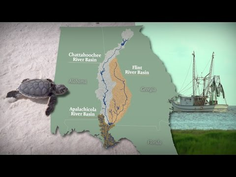 Apalachicola River & Bay: A Connected Ecosystem