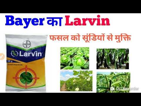 Bayer Larvin || Larvin Insecticide || फसल में सूंडियों से मुक्ति||