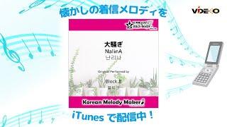 大騒ぎ (NalinA) [난리나] - Block.B [블락비] [K-POP40和音メロディ&オルゴールメ…