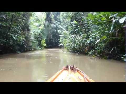 Amazon River Boat Ride