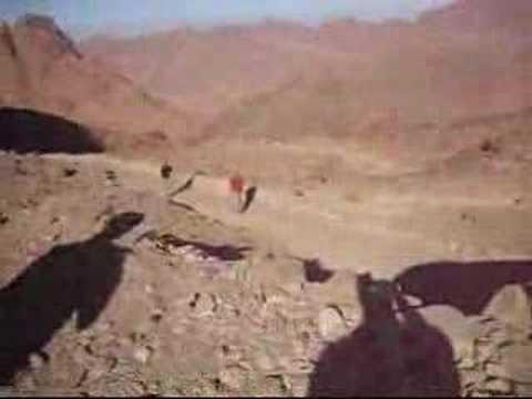 Mt Sinai Climb