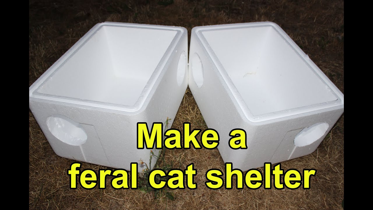 Make an extra-large feral cat shelter from styrofoam coolers - YouTube