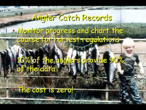 Do It Yourself Fish Population Assessment And Corrective Stocking