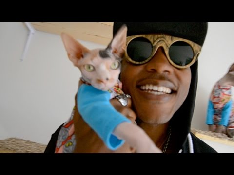 This Guy Who Raps About His Cats Is Totally Purrrfect | HuffPost