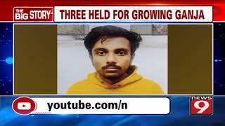 Three held for growing Hydro Ganja in Bengaluru