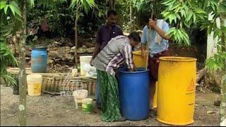 Success story Of Organic farming from kattappana Kerala | Kannadi 06 Dec 2015
