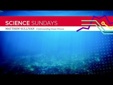 ASC Science Sundays: Matthew Sullivan - Understanding Ocean Viruses
