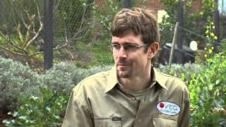 Gardening: Urban Farming