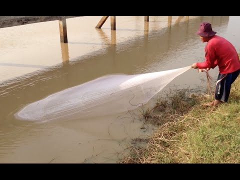 Fishing Tour in Cambodia to see Cambodian people catch fish by using their fishing nets