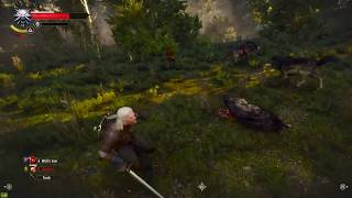 Witcher 3 Ghost Mode Vs Enhanced Edition
