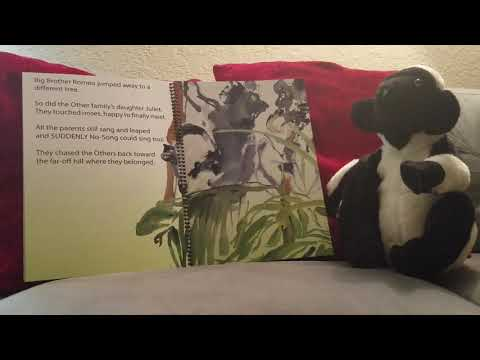 No-Song The Indri By Alison Jolly - Read Aloud