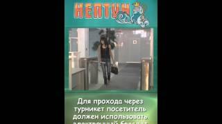 видео Правила аквапарка