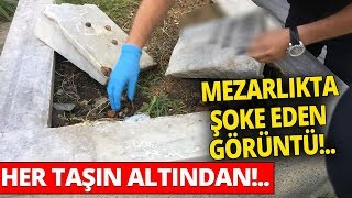 İstanbul'da Uyuşturucu Operasyonu! Mezar Taşı Altından Çıktı