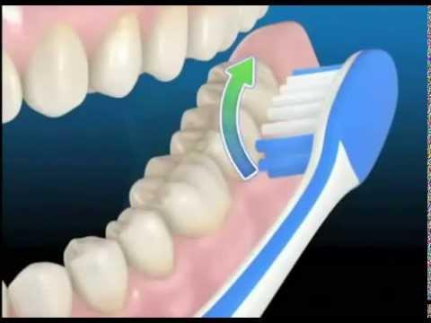 Extrêmement comment se brosser les dents correctement - YouTube NH41