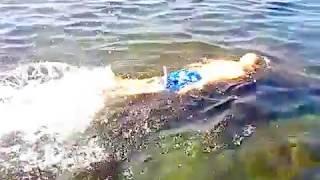 Плавание . Урок- 44 .Кроль на море .(, 2016-08-27T15:13:17.000Z)