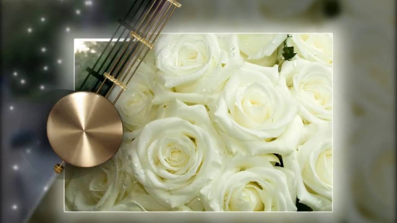 Поздравление на свадьбу с туалетной бумагой фото 625