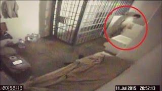 5 Echte Gefängnisausbrüche mit Kamera aufgenommen!