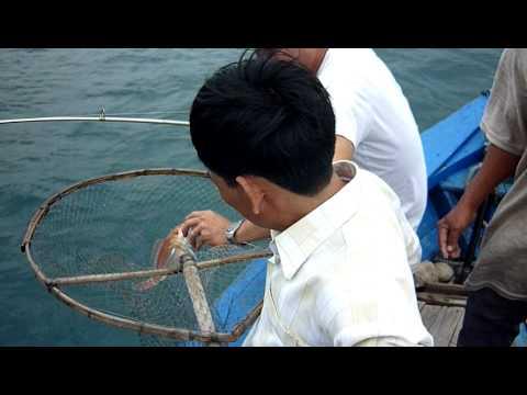 câu biển Nha Trang - thegioicauca.com Part 1