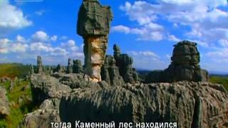 Документальные фильмы 13/02/2016  Память истории