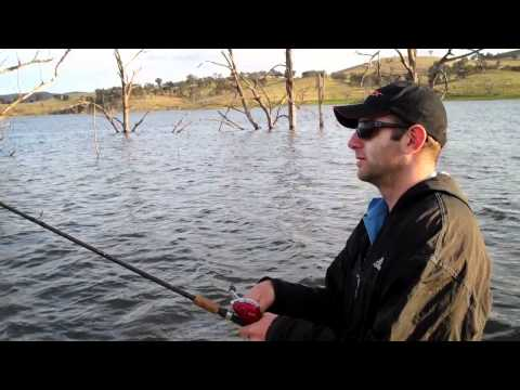 Yellowbelly Fishing At Lake Windamere. Live Hook Up.wmv