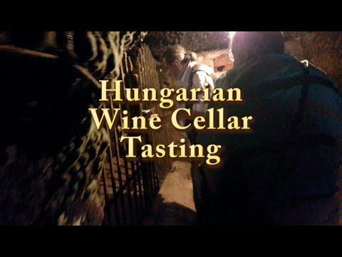 Hungarian Wine Cellar Tasting