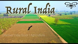 SUGARCANE FIELDS OF NORTH INDIA | INDIAN AGRICULTURE AERIAL VIEW | 4K UHD