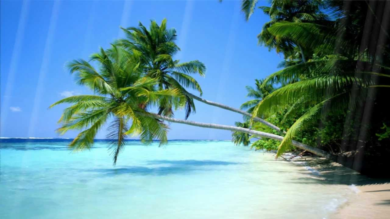 moving beach backgrounds for wallpaper - photo #17
