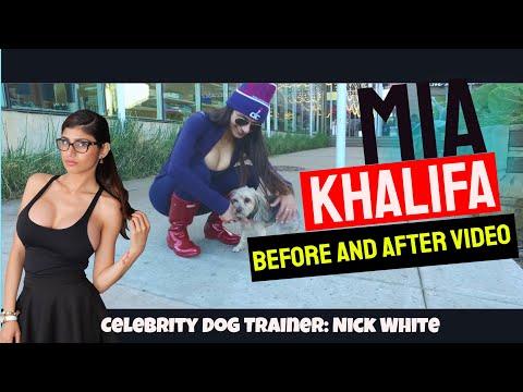Mia Khalifa's Second Dog, Princess   2.5 Day After Video   Nick White Dog Training