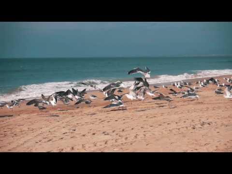 Adventure Tourism - Fujairah