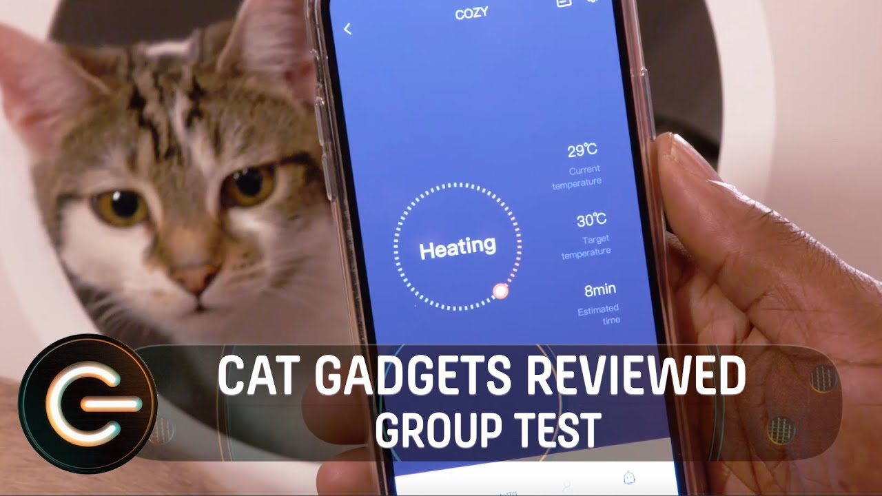 The Best Gadgets for your Cat