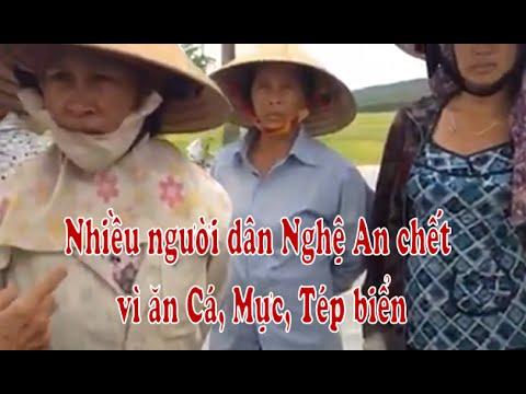Nhiều người dân Nghệ An chết vì ăn cá, mực, tép biển