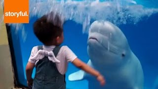 Beluga Whale Sprays Kid