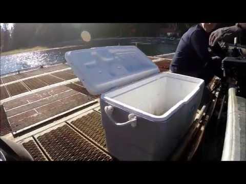 Quatsino Sound Fishing: Day 3