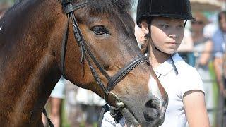 10-й конный фестиваль «ФАВОРИТ CHALLENGE»
