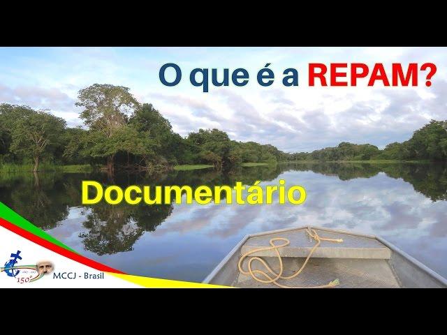 Papa Francisco, igreja e REPAM: rede pela amazônia e vida