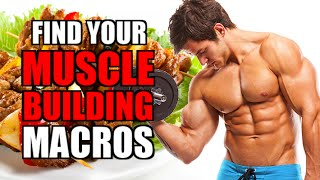 The Easiest Way To Calculate Your Calories For Muscle Building | Hardgainers Transformation Tips